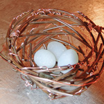 Nest with copper sprigs