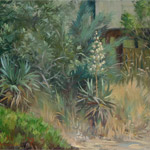 Yucca and Russian Olive